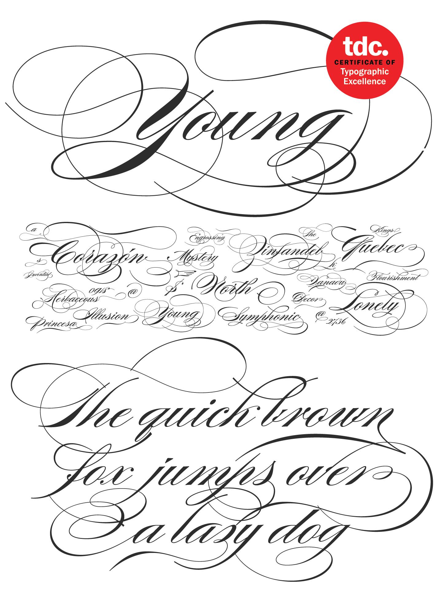 Burgues Script Font Family Sudtipos